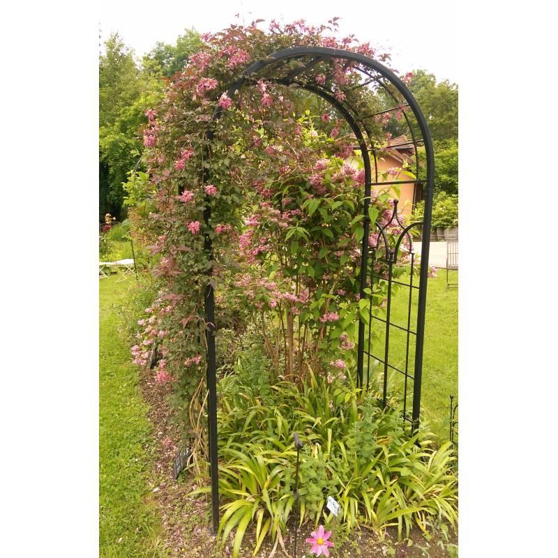 Arche Princess Arche à Fleurs Rosiers Tuteur Plantes De Jardin
