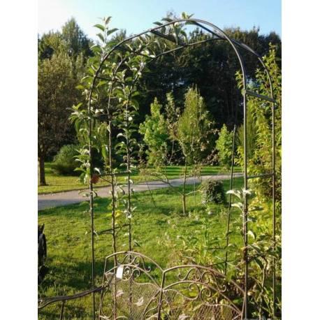 Arche Simple Arche à Fleurs Rosiers Tuteur Plantes de Jardin Passage en Fer Forgé Gris Anthracite 40x150x250cm
